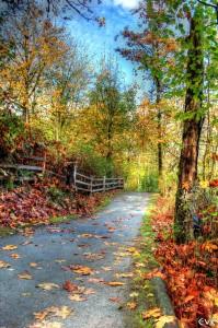 trail-63867